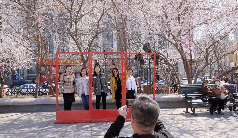 近日,哈尔滨市气温持续上升,春光明媚,桃李芬芳。浓浓春意,引来如潮观者,他们在花丛中拍照打卡,流连忘返。
