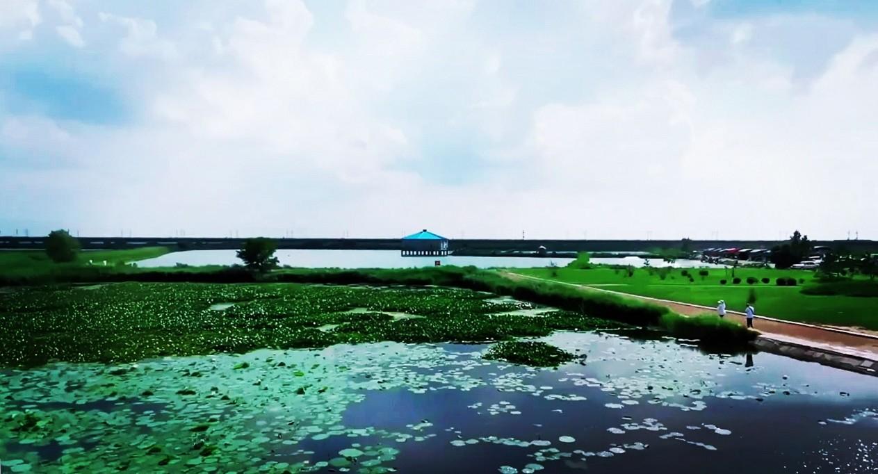 """作为亚洲最大的""""城中湿地""""——大庆市龙凤国家湿地公园,占地广阔,这里实现了人与自然的和谐统一。"""