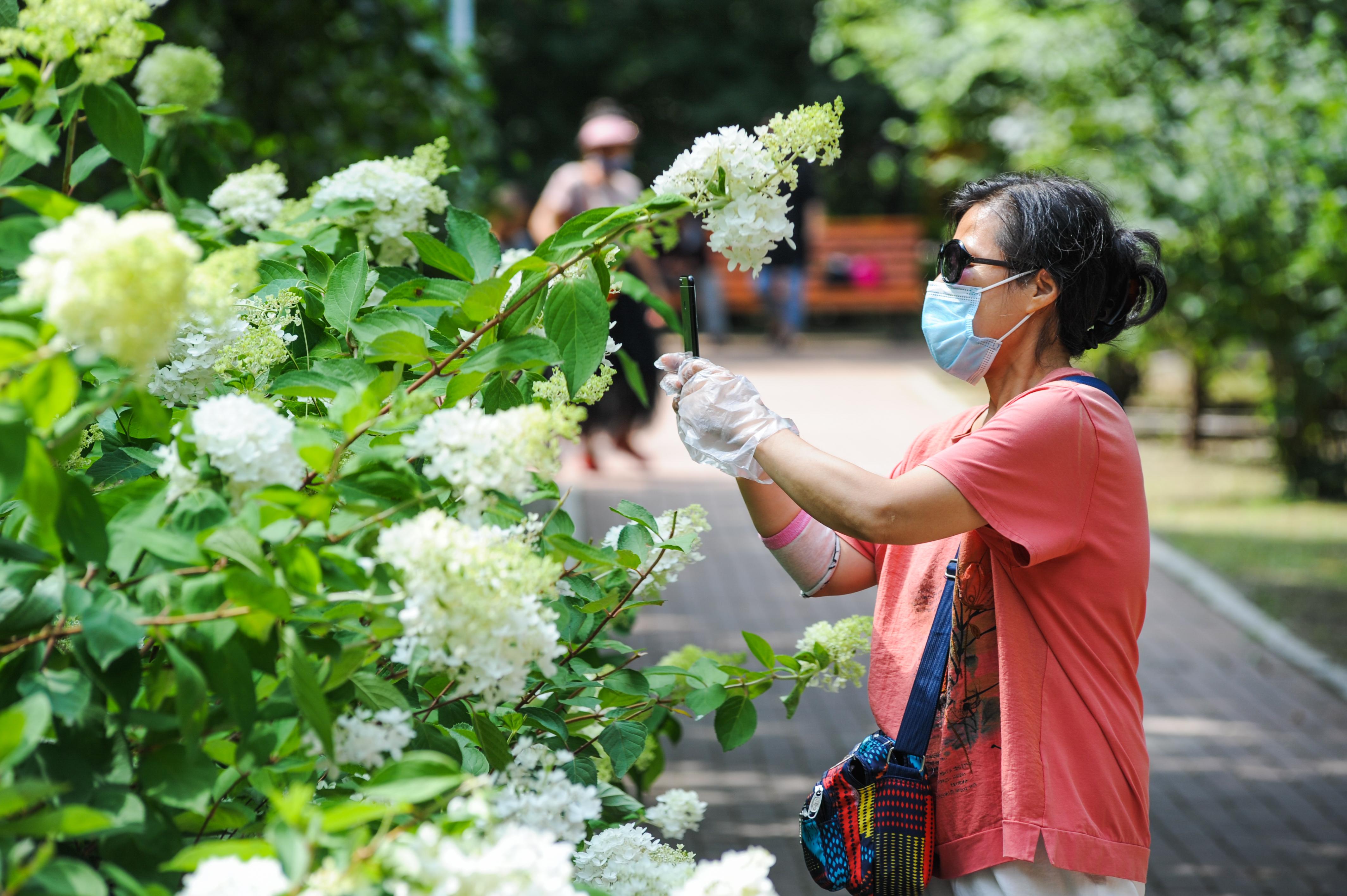近日,哈尔滨市多个公园鲜花盛开,朵朵鲜花争奇斗艳。市民和游客在公园内穿行,在花海内徜徉,在凉爽的初秋里尽情享受这姹紫嫣红的花季。